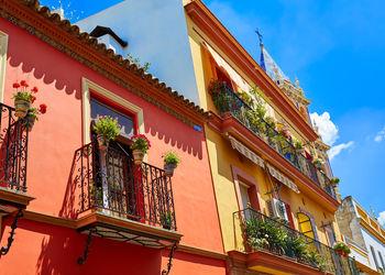 Pisos y casas en venta de inmobiliaria sevilla triana for Alquiler estudio sevilla capital