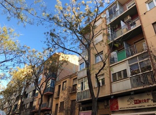 Pisos Y Casas En Alquiler En Zaragoza Provincia
